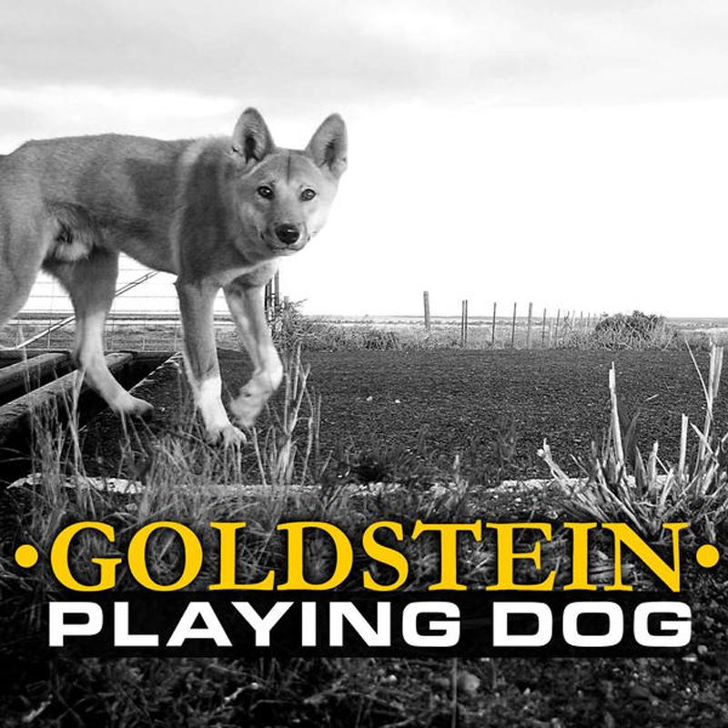 goldstein lp